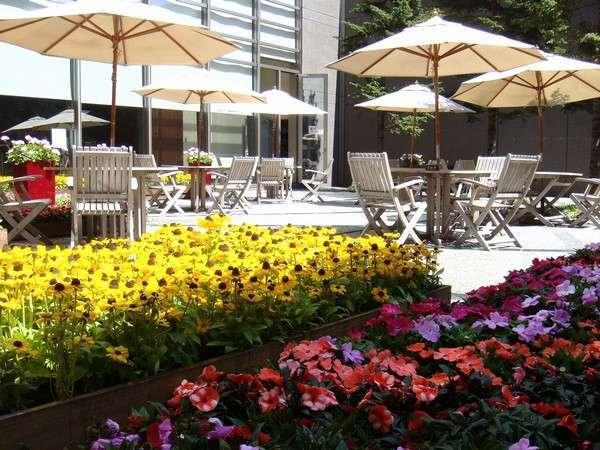夏の中庭、ルドベキアの黄色とインパチェンスの赤とで彩られています
