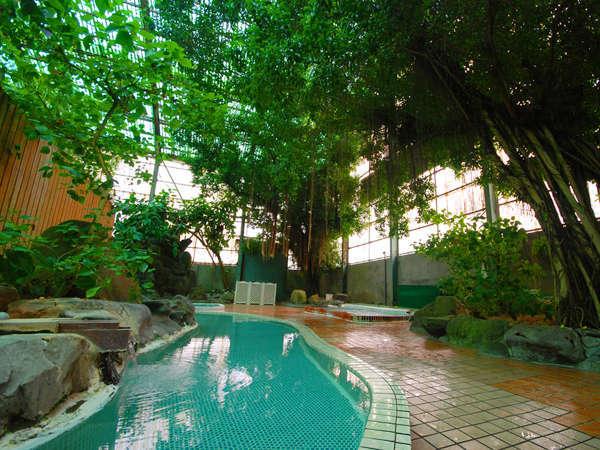 400畳の特大ジャングル温泉は子供にも大人気!源泉掛け流しの天然温泉