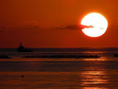 橘湾を茜色に染めて沈む夕日