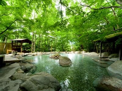 新緑の露天風呂も貸切可能