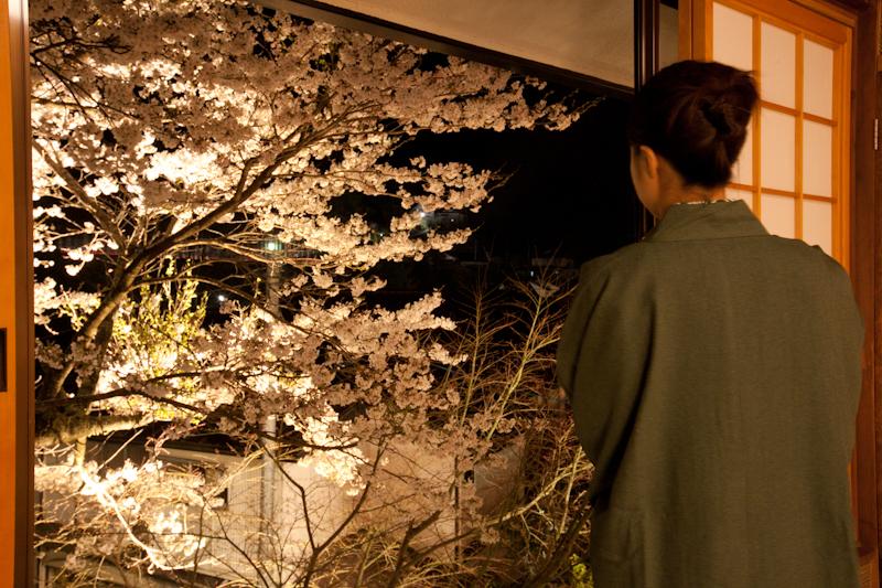 春には窓から桜を望む
