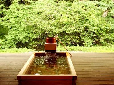 宝泉寺温泉に含まれる「メタケイ酸」は美肌によいとされ女性に人気の泉質