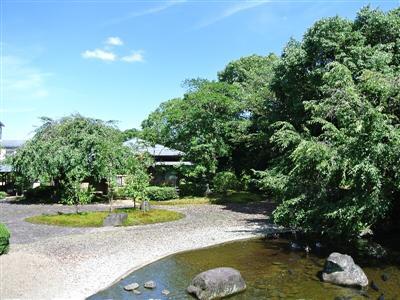 ロビー横には庭園があり、鯉に餌付けもできる