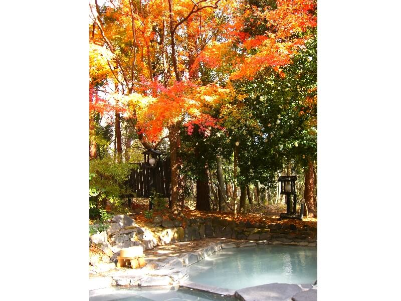 宿の周囲は森林セラーピーロードに選ばれており散歩道の先には滝もある