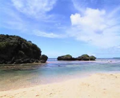 手つかずの自然が残る西表島