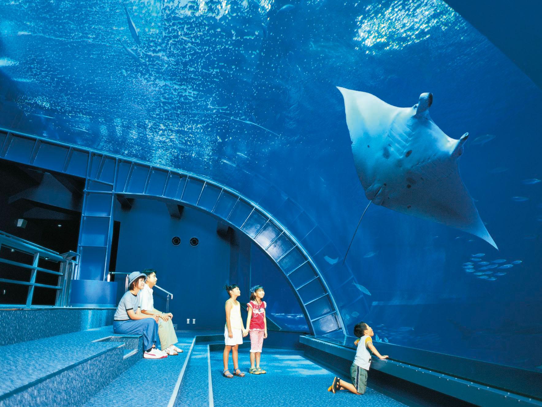 人気観光スポット「沖縄美ら海水族館」まで車で10分以内の好立地