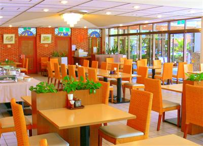 自然の光があふれるレストラン