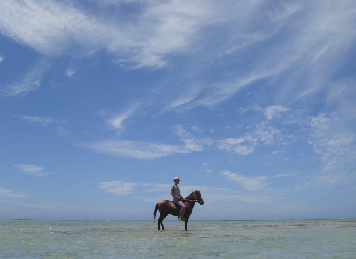与那原馬のビーチ乗馬