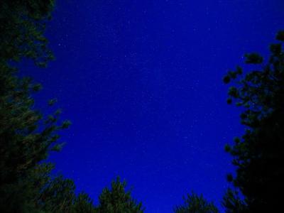 満天の星空を眺めながらゆっくり過ごす夜