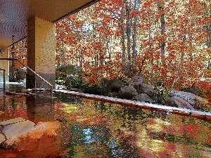 露天風呂からは四季折々の風景を楽しむことができます