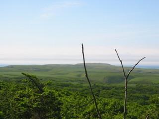山から見た岬