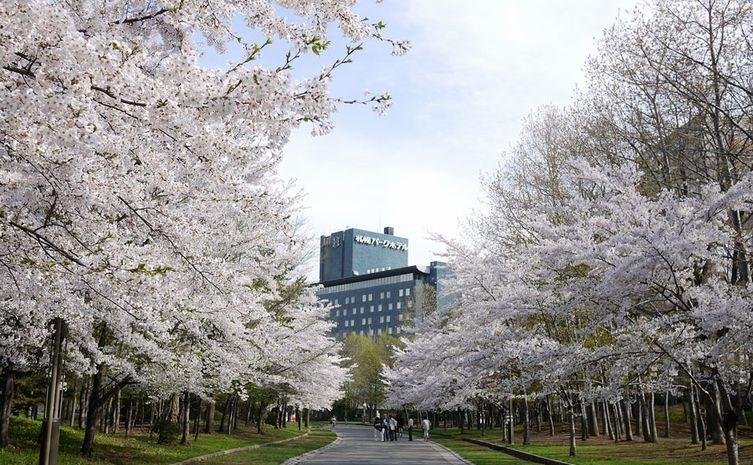 http://hotel-sys.tabirai.net/img/photo/hokkaido/24913.jpg