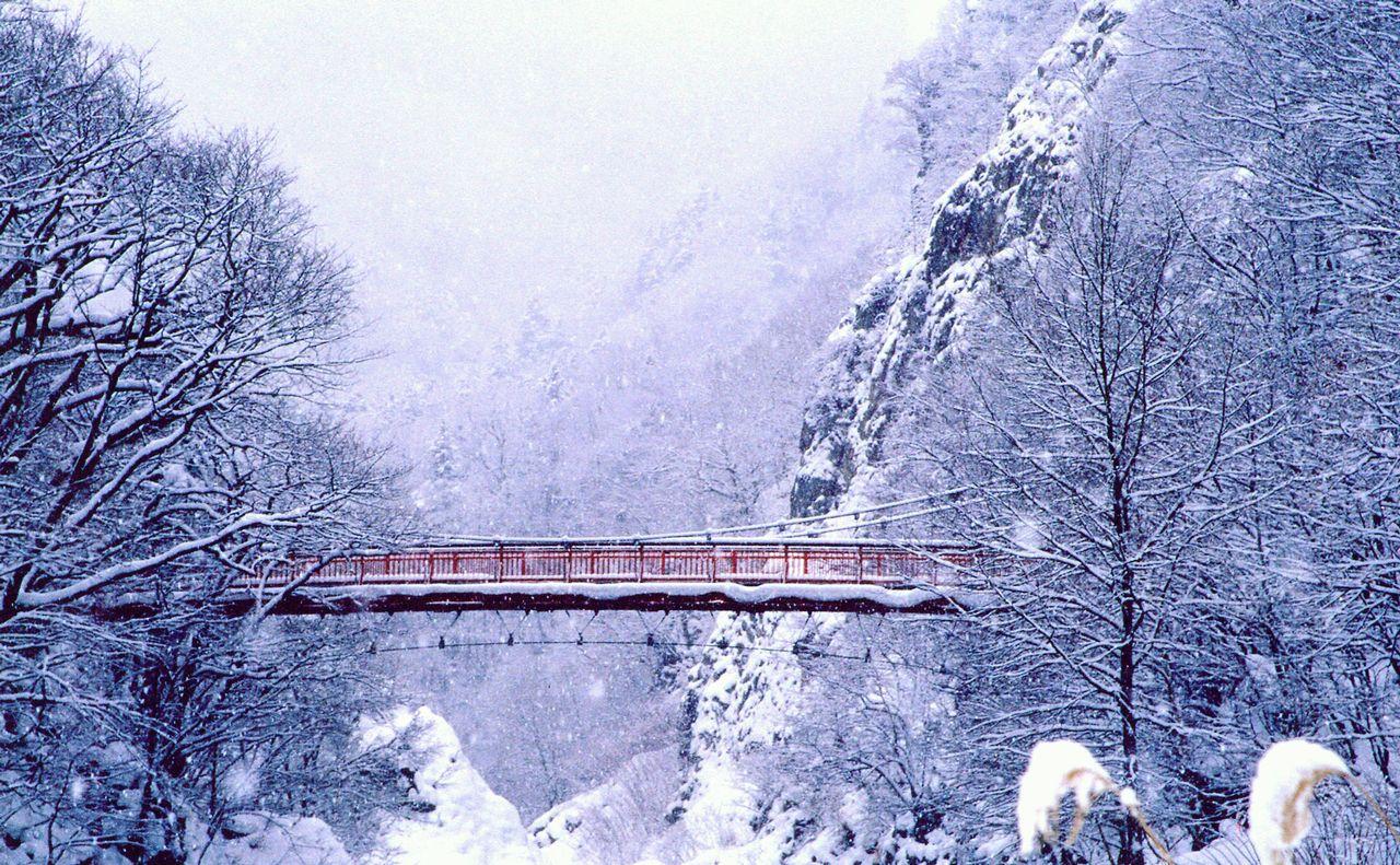 定山渓で楽しむ 宿、温泉、グルメと町歩きの記事イメージ